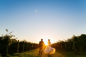 Highdown Sunset bride and groom