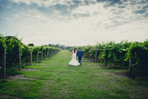 Highdown Vineyard - Couple in Vineyard back