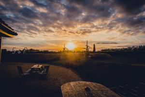 Highdown Vineyard - Sunset